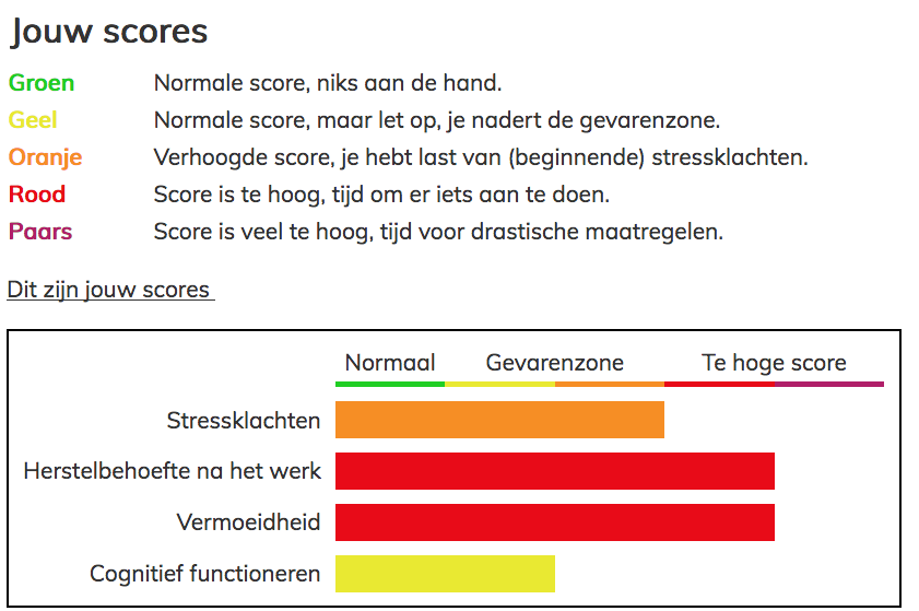 Resultaten van vragenlijstscores - Week van de Werkstress